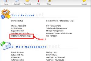 Thủ thuật làm nhanh backup và restore ở hosting directadmin